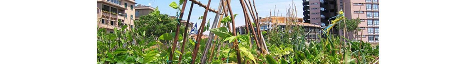 Coltiviamo la città, un orto per quartiere