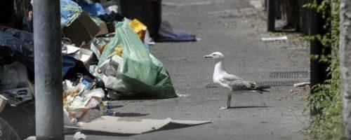 Roma bocciata dai suoi cittadini